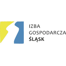 IG Śląsk.jpeg