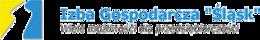logo IG SILESIA.png