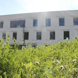 Galerie Wiosna w Centrum Biznesu